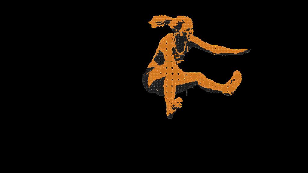 decathlon fitness à Cappelle-la-Grande